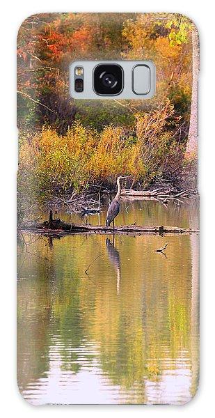 Blue Heron Lake Galaxy Case