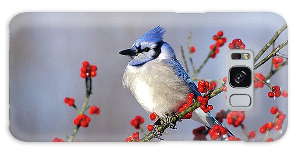 Cold Day Galaxy Case - Blue Jay (cyanocitta Cristata by Richard and Susan Day