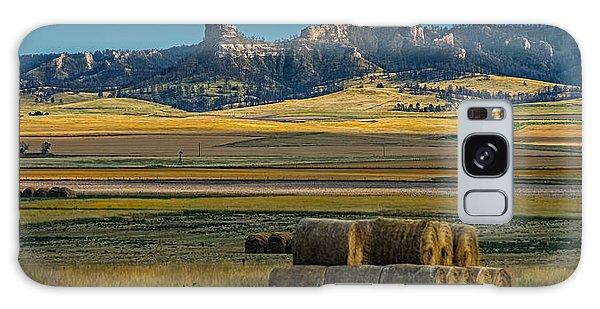 Bluff Country Galaxy Case