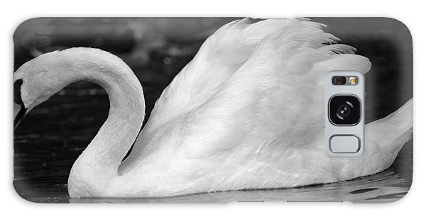 Boston Public Garden Swan Galaxy Case
