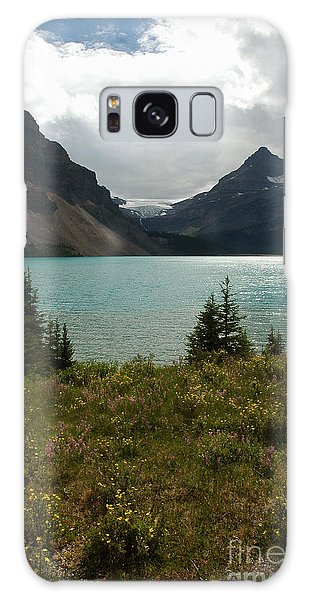 1010a Bow Lake Alberta Galaxy Case