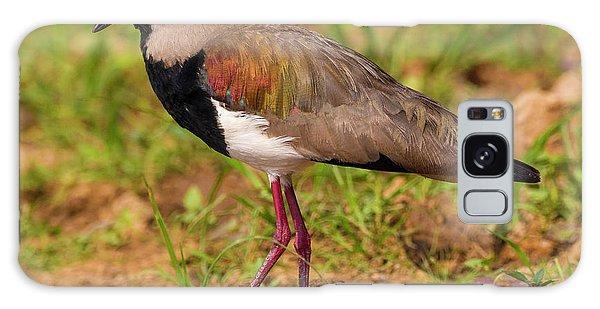 Brazil A Southern Lapwing (vanellus Galaxy Case