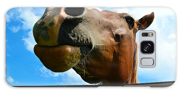 Brown And White Horse Galaxy Case