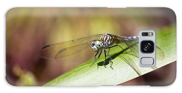 Brown Dragonfly Galaxy Case