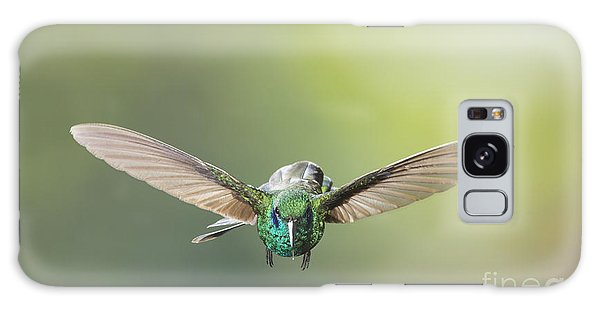 Brown Violet-ear Hummingbird Galaxy Case