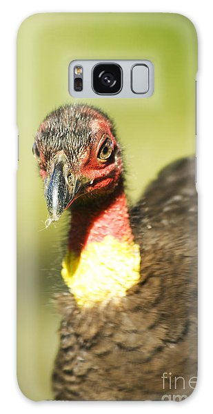 Brush Scrub Turkey Galaxy Case by Jorgo Photography - Wall Art Gallery