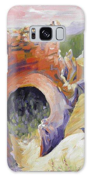Bryce Canyon Arch Utah Galaxy Case