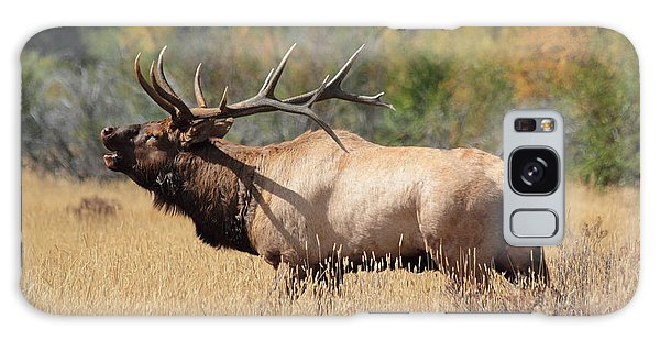 Bugling Bull Galaxy Case