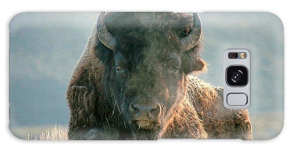 Bull Bison Galaxy Case