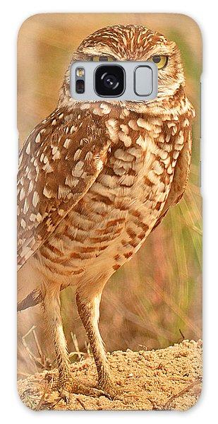 Burrowing Owl Galaxy Case by Nancy Landry