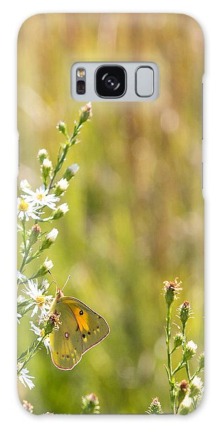 Butterfly In A Field Of Flowers Galaxy Case