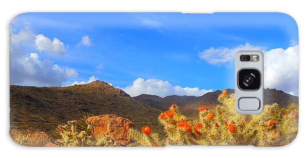 Cactus In Spring Galaxy Case