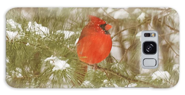 Cardinal In Snow Storm Galaxy Case