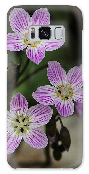 Carolina Spring Beauty Galaxy Case