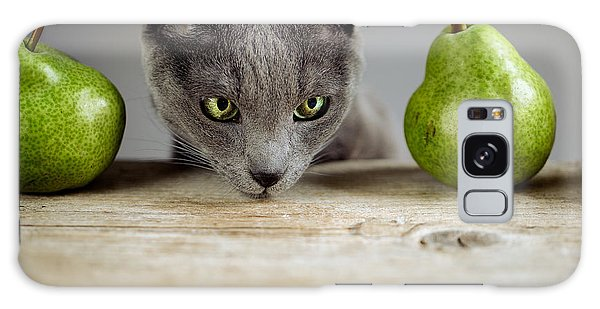 Cat And Pears Galaxy Case by Nailia Schwarz