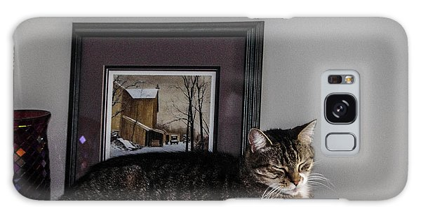 Cat At Rest Galaxy Case