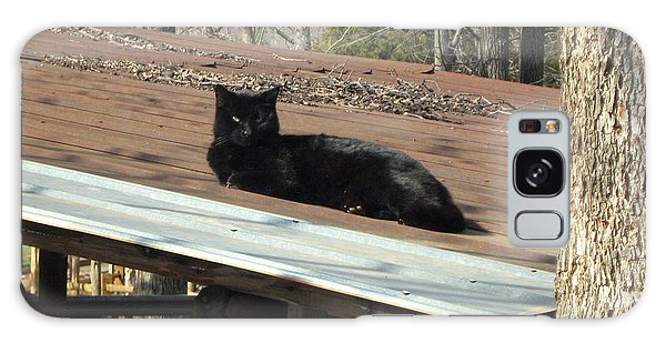 Cat On A Tin Roof Galaxy Case