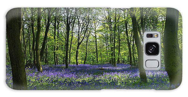 Chalet Wood Wanstead Park Bluebells Galaxy Case by David French