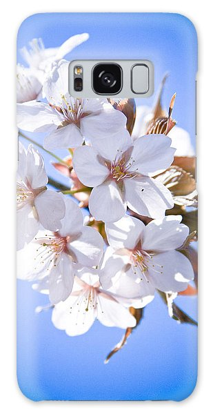 Cherry Tree Blossoms Close Up Galaxy Case