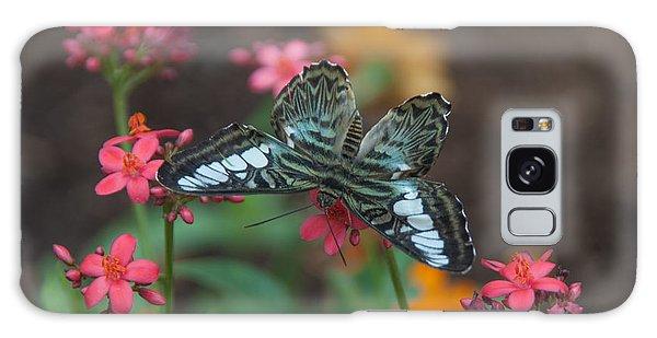 Clipper Butterfly 6150-052513-1cr Galaxy Case