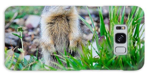 Columbian Ground Squirrel Galaxy Case