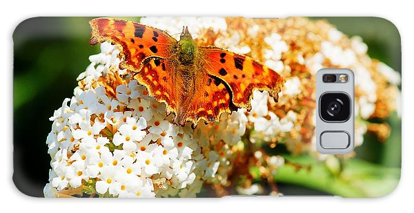 Comma Butterfly Galaxy Case