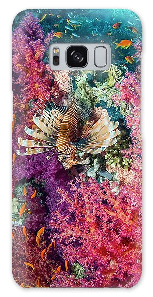 No-one Galaxy Case - Common Lionfish Hunting A Reef by Georgette Douwma