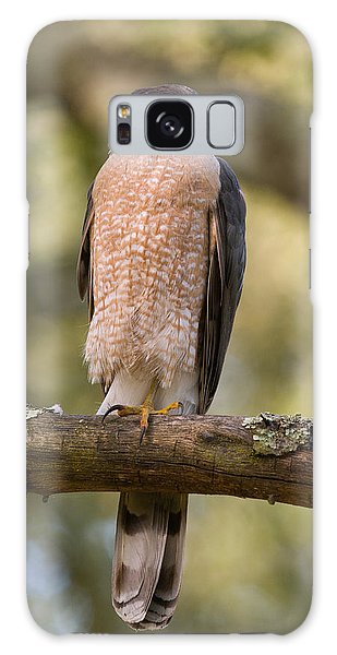 Cooper's Hawk Galaxy Case