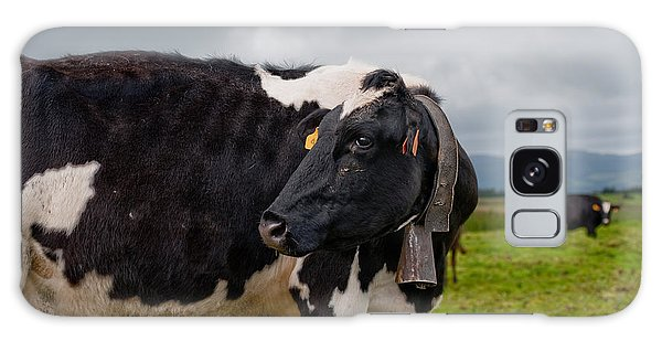 Cow Wearing Cowbell  Galaxy Case