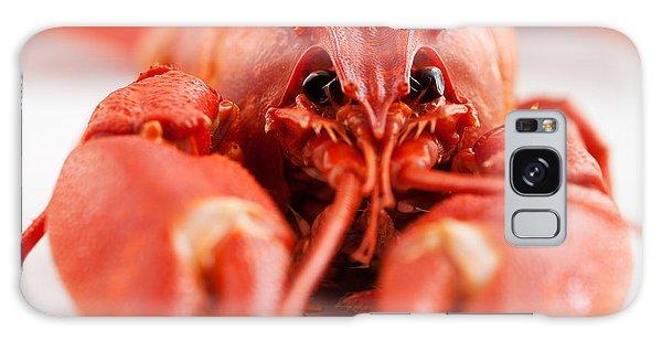 Crawfish Galaxy Case