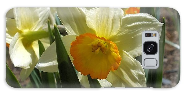 Galaxy Case featuring the photograph Daffodil by Gene Cyr