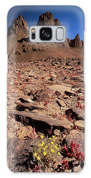 Desert Flora Galaxy Case - Desert Flowers by Sinclair Stammers/science Photo Library