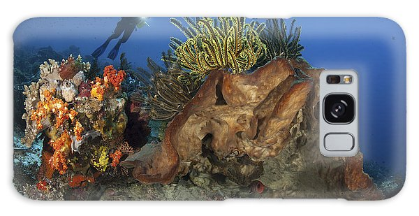Feather Stars Galaxy Case - Diver Looks On At A Colorful Komodo by Steve Jones