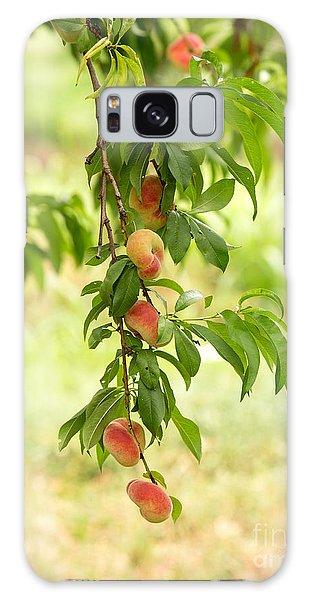 Peach Galaxy Case - Donut Peaches by Iris Richardson