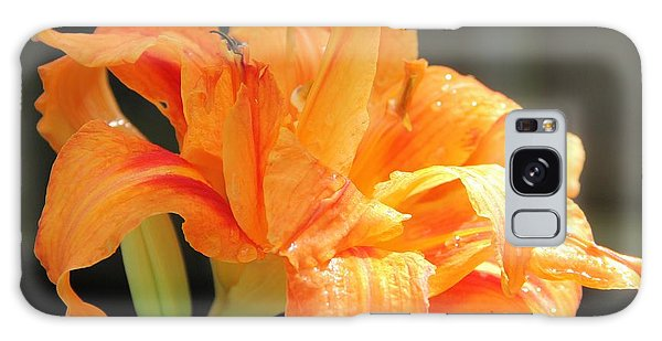 Double Orange Daylily Galaxy Case