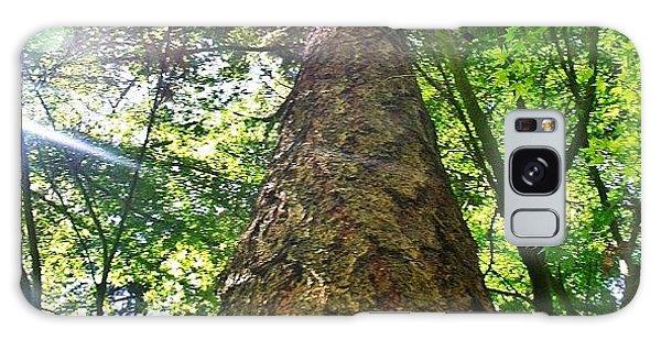 Sunny Galaxy Case - Douglas Fir Tree Rising by Anna Porter