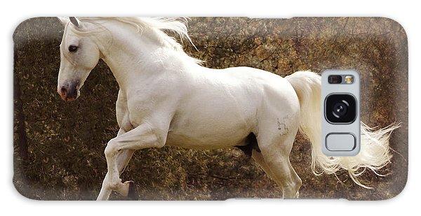 Dream Horse Galaxy Case