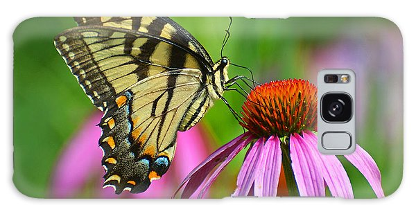 Eastern Tiger Swallowtail  Galaxy Case by Rodney Campbell