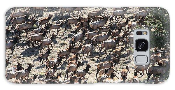Elk Herd Galaxy Case