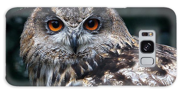European Eagle Owl Galaxy Case