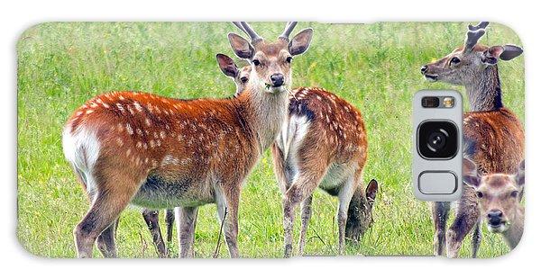 Fallow Deer Galaxy Case