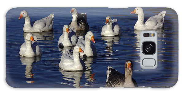 Family Goose Galaxy Case