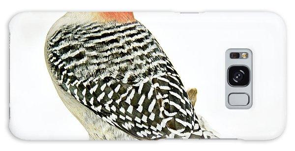 Female Redbellied Woodpecker In Winter Animal Portrait Galaxy Case