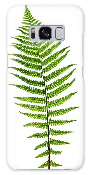 Fern Leaf Galaxy Case