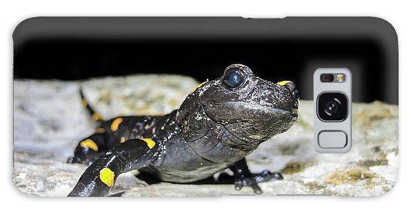 Fire Salamander (salamandra Salamandra) Galaxy Case