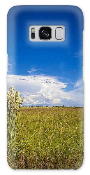 Bradenton Galaxy Case - Florida Flat Land by Marvin Spates