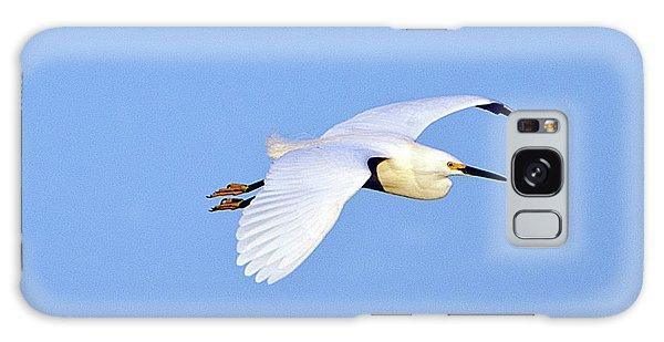 Florida, Venice, Snowy Egret Flying Galaxy Case