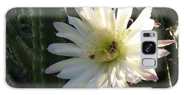 Flowering Cactus 1 Galaxy Case