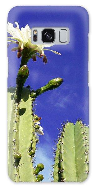 Flowering Cactus 2 Galaxy Case