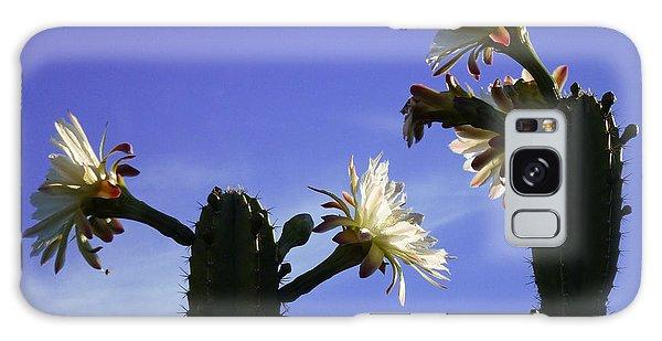 Flowering Cactus 4 Galaxy Case